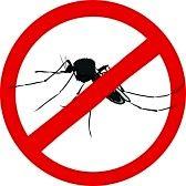 Avviso Disinfestazione mosche e zanzare 13 -14