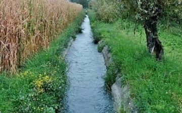 Ordinanza ripristino pulizia e corretta gestione dei fossati presenti nel territorio comunale